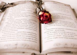 Livre et Rose